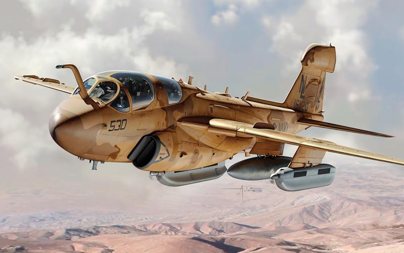Byggmodell flygplan - EA-6B Prowler - 1:48 - IT
